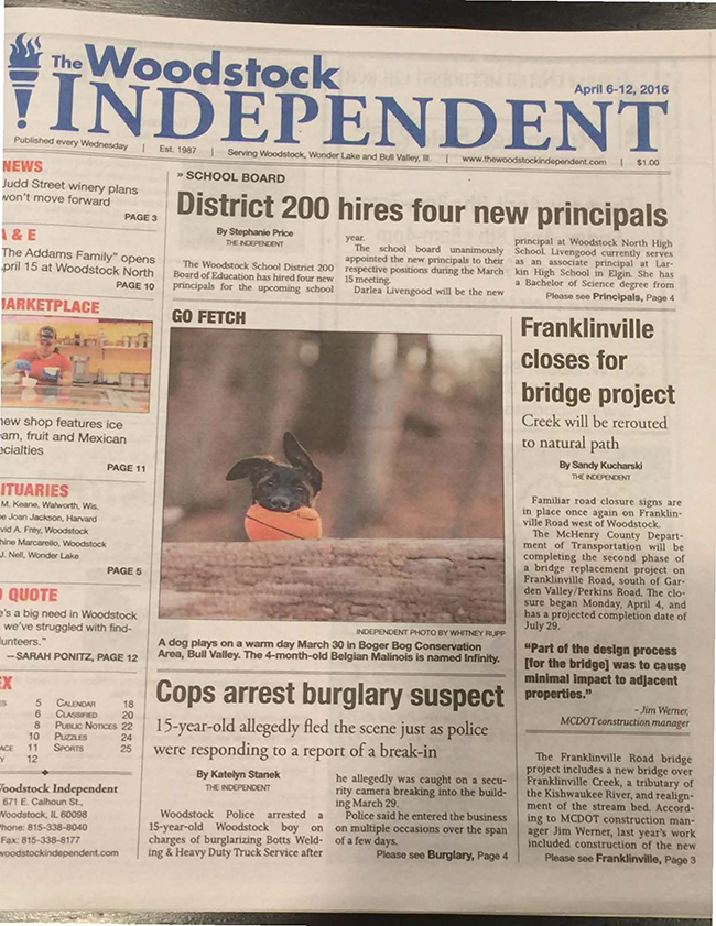 Shari Lipski CLFP Four Month Old Puppy Infinity Makes The Front Page Of Local Newspaper